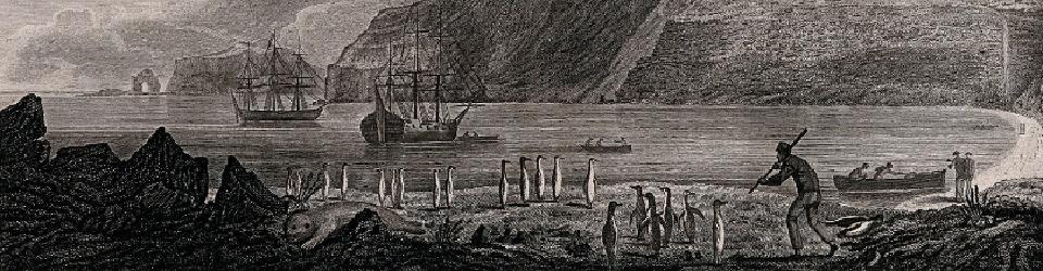 Isle Kerguelen